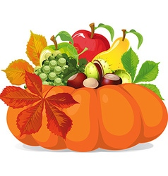 pumpkin with autumn leaves - vector image vector image