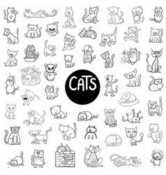 black and white cats big set vector image vector image