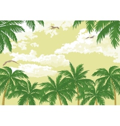 Tropical landscape palms seagulls and sky vector image