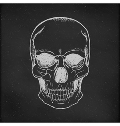 Hand drawn Skull Chalkboard Background vector image vector image