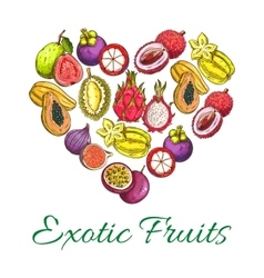 Exotic fresh fruits poster in heart shape vector