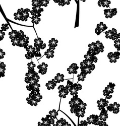 Seamless pattern with black cherry flowers vector image vector image