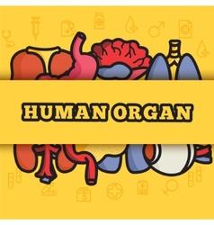 set flat human organs icons concept backgro vector image vector image