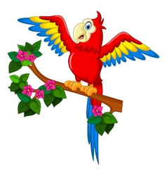 Cartoon red parrot on a branch for you design vector