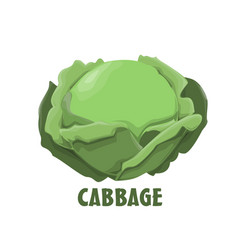 Logo cabbage farm design vector