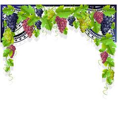 vintage frame grapes vector image