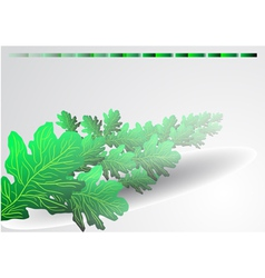Background with green oak leaves vector