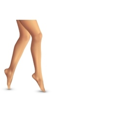 Beautiful women legs on white background vector