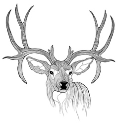 Deer head animal for t-shirt sketch tattoo design vector