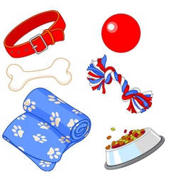 Pet equipment vector image