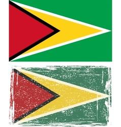 Guyana grunge flag vector image vector image