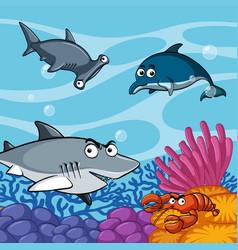 Wild sharks under the sea vector