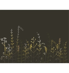 Wild field flowers and grass on black background vector