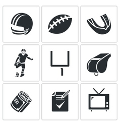 American football Icons Set vector image vector image