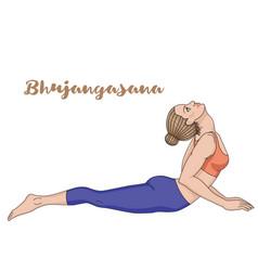 women silhouette cobra yoga pose bhujangasana vector image vector image