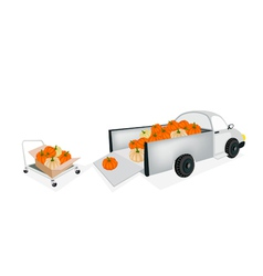 Hand truck loading fresh pumpkins into pickup vector