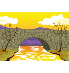 bridge made up of stone vector image vector image