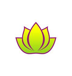 Lotus flower spa beauty logo vector