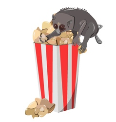 Popcorn with lemur vector