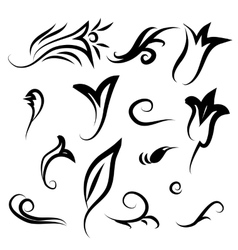Decor items of flowers leaves and curls vector
