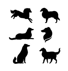 Breed of a dog collie silhouettes vector