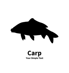 Isolated silhouette of carp fish vector