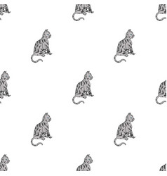 American shorthair icon in cartoon style isolated vector