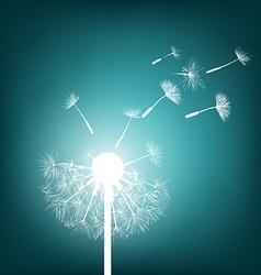 Glowing dandelion Stock vector image vector image