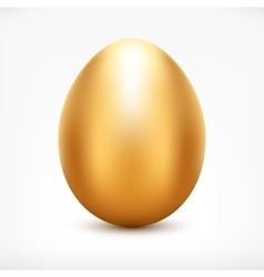 Golden Egg vector image