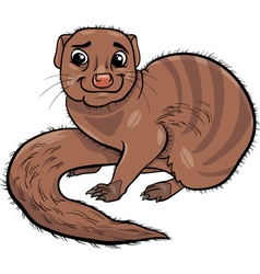 Mongoose animal cartoon vector