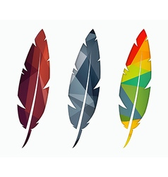 Set of colored feathers abstract polygonal element vector