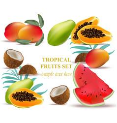 Fruits coconut avocado papaya kiwi pomegranate vector