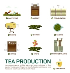 Seamless of tea production vector
