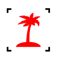 Coconut palm tree sign red icon inside vector