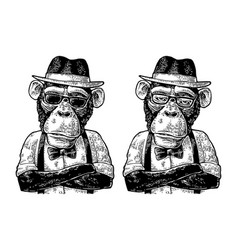 Monkey hipster with arms crossedin in hat shirt vector