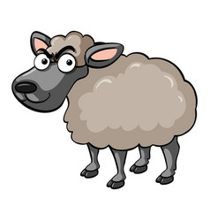 Serious sheep on white background vector