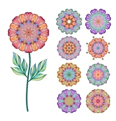 Set of abstract isolated colorful flowers vector image vector image