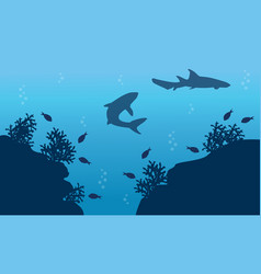 Silhouette of fish and shark underwater landscape vector