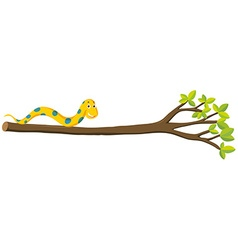 Snake crawling on branch vector image vector image