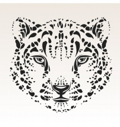 snow leopard head vector image