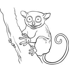 tarsier animal cartoon coloring book vector image vector image