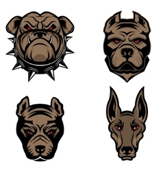 Set of the dogs heads isolated on white background vector image
