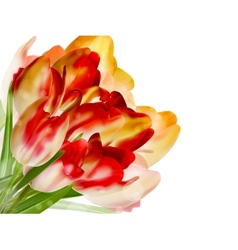 Red tulips and bokeh background eps 10 vector