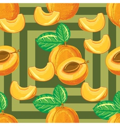 Seamless pattern of ripe apricot vector