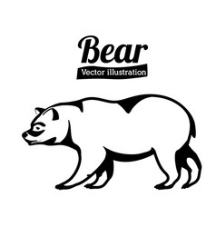 Bear design vector