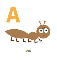 Letter A Ant Insect Zoo alphabet English abc with vector image