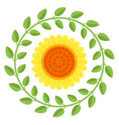 Beautiful sunflower isolated on a white background vector