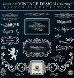 Calligraphic heraldic decor elements vintage vector
