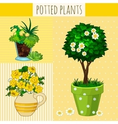 Three different flowers in pots vector