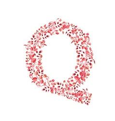 Romantic floral letter q vector